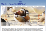 Montagu Springs home page